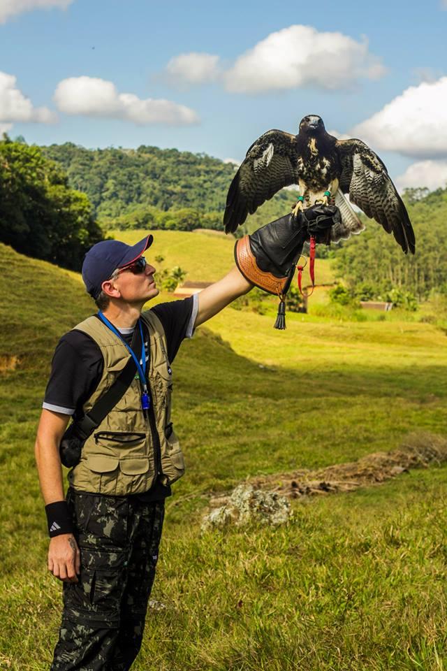 A arte da falcoaria é preservada em Pomerode