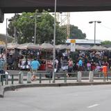 Camelódromo Provoca Polêmica no Rio