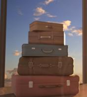 anac bagagem
