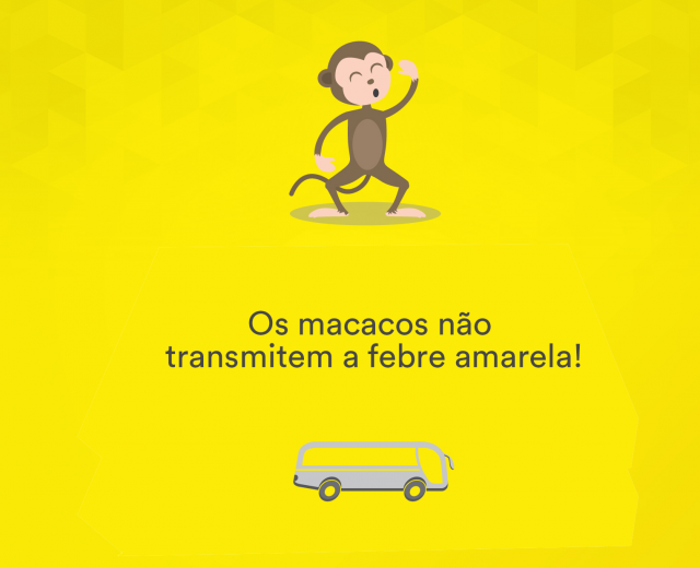 macaco febre amarela rodoviariaonline