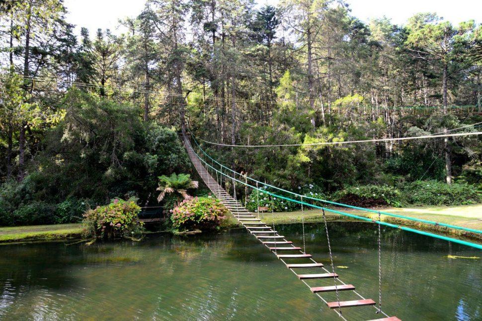 Arvorismo e trilhas no Horto Florestal. Foto: Joaquim Nery.