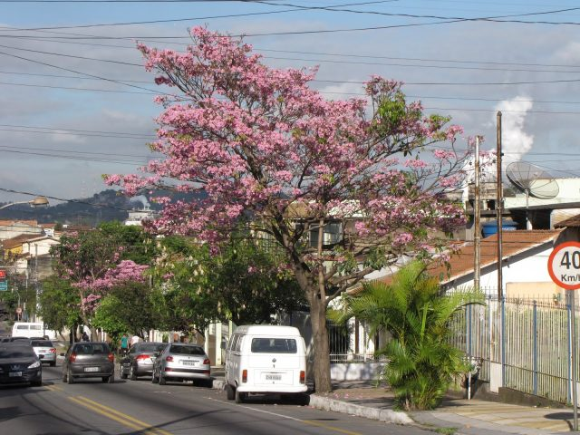Volta Redonda
